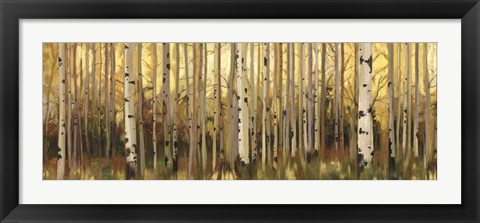 Framed Forest Light Print