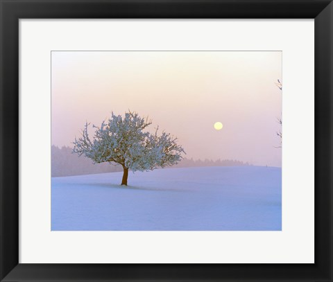 Framed Foggy winter scene with tree and moon Print