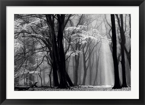 Framed Winter is Coming Print