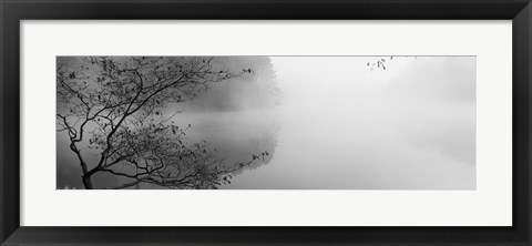 Framed Reflection of trees in a lake, Lake Vesuvius, Wayne National Forest, Ohio, USA Print
