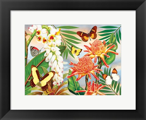 Framed Butterflies With Torch Ginger Print