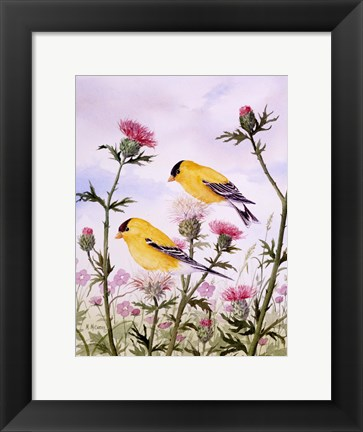 Framed Goldfinch and Thistle Print