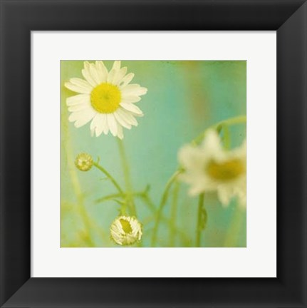 Framed White Flowers IV Print