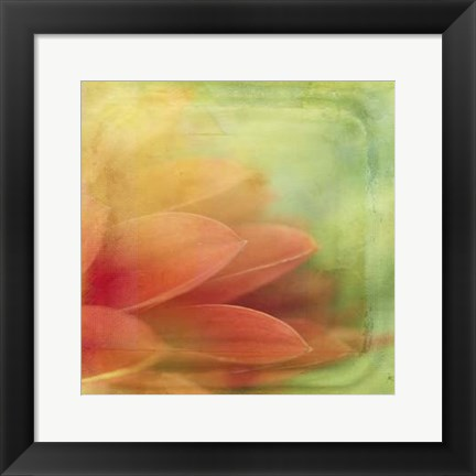 Framed Filtered Dreams VII Print