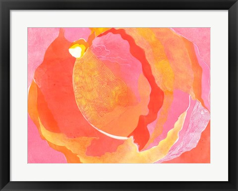 Framed Cabbage Rose I Print