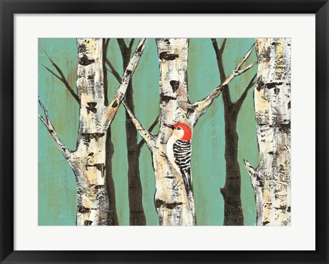 Framed Birch Grove on Teal II Print