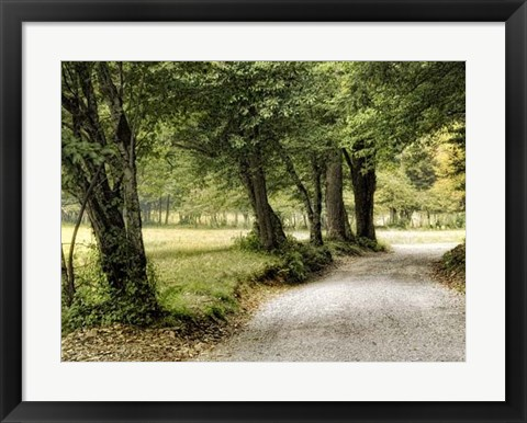 Framed Path in the Country Print