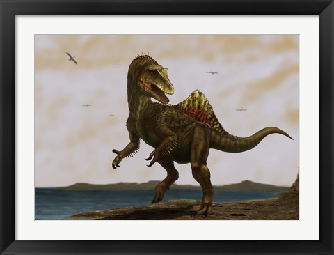 Framed Concavenator corcovatus running on the beach Print