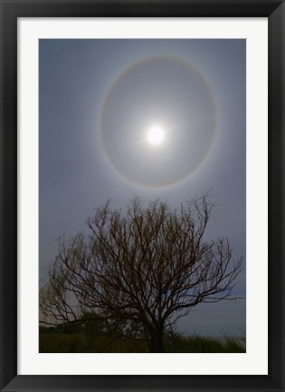 Framed 22 degrees halo around the 2013 supermoon Print