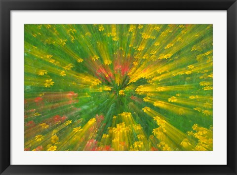 Framed Garden Abstract Print