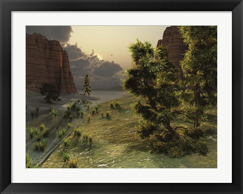 Framed trees are kissed by sunlight before an approaching storm Print