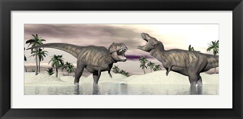Framed Two Tyrannosaurus rex dinosaurs fighting in the water Print