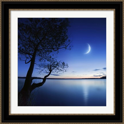 Framed Silhouette of a lonely tree in a lake against a starry sky and moon Print