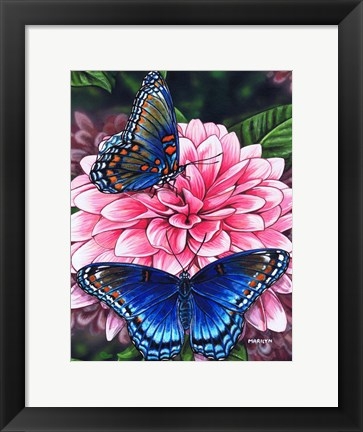 Framed Red Spotted Purple Butterfly Print