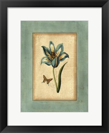Framed Crackled Spa Blue Tulip III Print