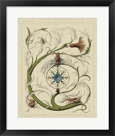 Framed Decorative Flourish III Print