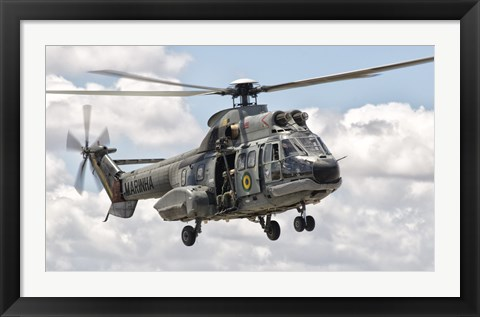 Framed Eurocopter AS332 Super Puma Helicopter of the Brazilian Navy Print