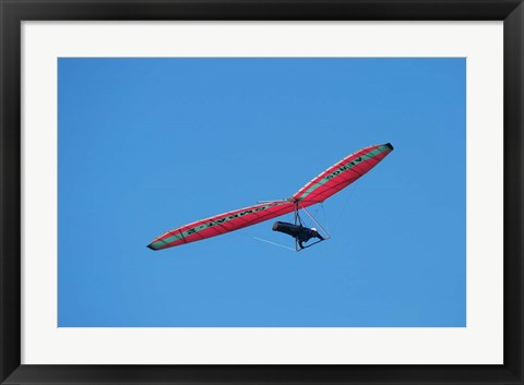 Framed Hang glider, Otago Peninsula, South Island, New Zealand Print