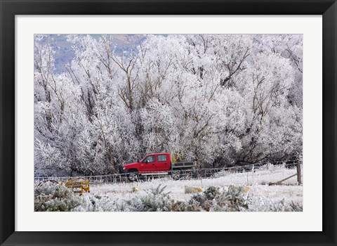 Framed Four Wheel Drive and Hoar Frost, Sutton, Otago, South Island, New Zealand Print