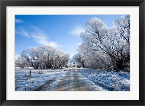 Framed Hoar Frost near Oturehua, Central Otago, South Island, New Zealand Print