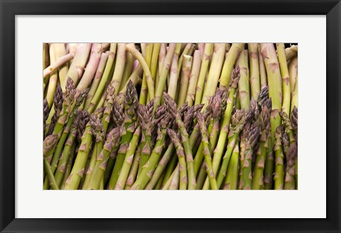 Framed Asparagus, Marlborough, South Island, New Zealand Print