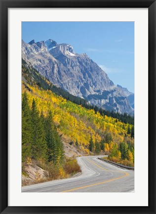 Framed Canada, Alberta, Jasper NP Scenic of The Icefields Parkway Print