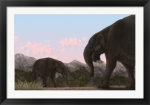 Framed Two Deinotherium, an Extinct Animal of the Miocene Epoch Print