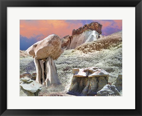 Framed Bisiti Wilderness Print