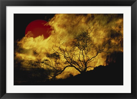 Framed Composite of a Lone tree, Burning Fire, and Red Sun Print