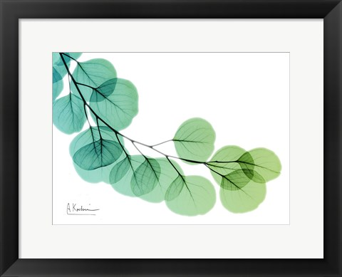 Framed Eucalyptus Green Blue Print