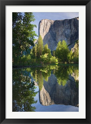 Framed El Capitan reflected in Merced River Yosemite NP, CA Print