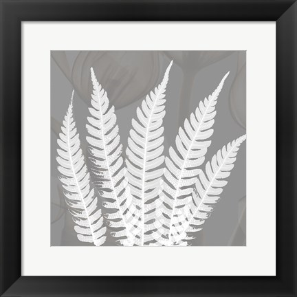 Framed Grey Beauty 4 Print