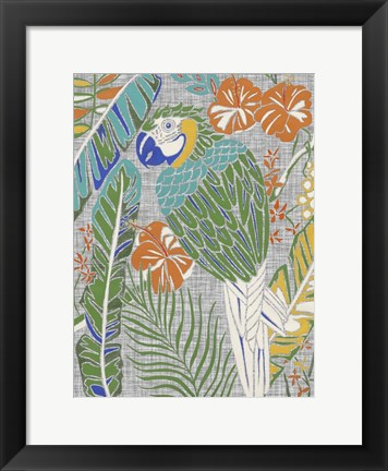 Framed Tropical Macaw Print