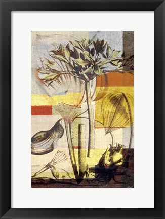 Framed Lily Mix II Print