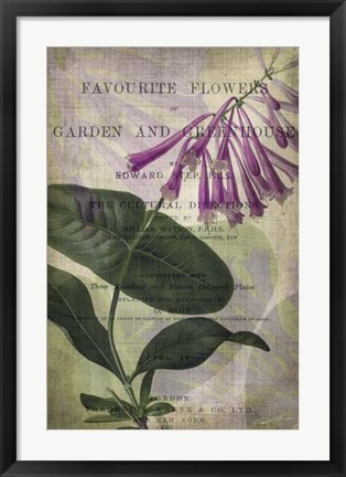 Framed Favorite Flowers III Print