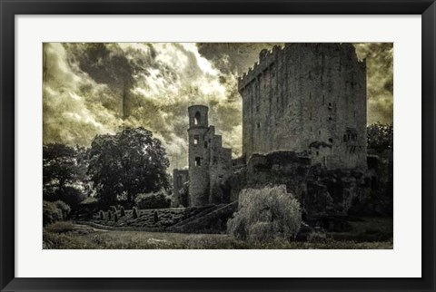 Framed Irish Castle Views III Print
