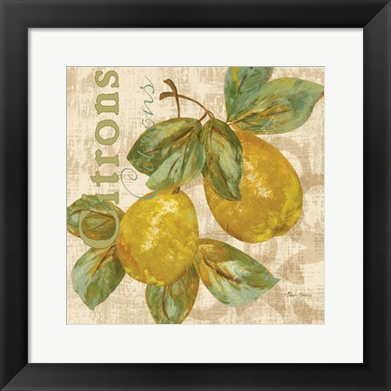 Framed Rustic Fruit III Print