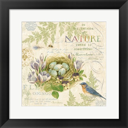 Framed Nature Trail I Print