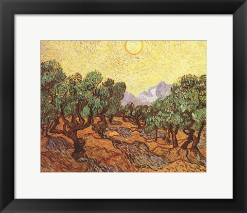 Framed Olive Trees, c.1889 Print
