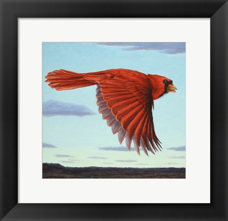 Framed Flight Print