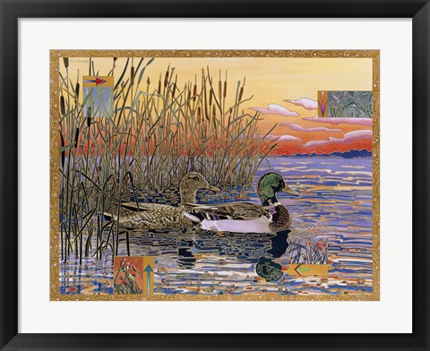 Framed Mallards at Dawn Print