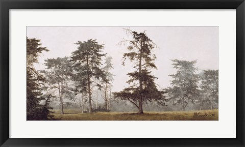 Framed Misty Grove Print