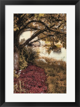 Framed Under the Tree Print
