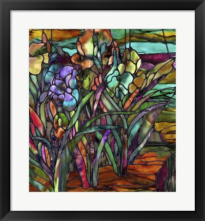 Framed Candy Coated Irises Print