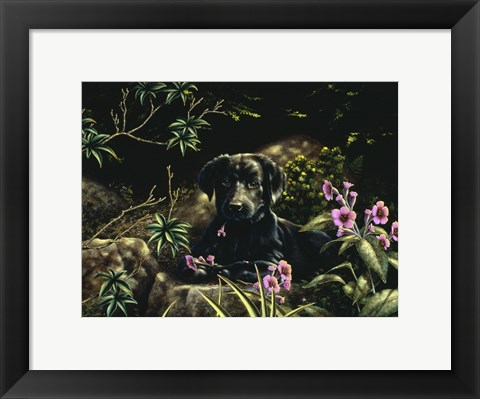 Framed In Amongst the Flowers Print