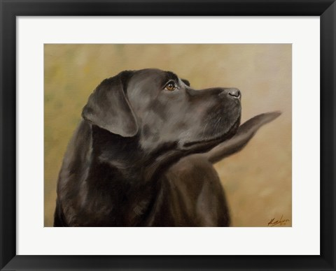 Framed Black Lab 13 Print