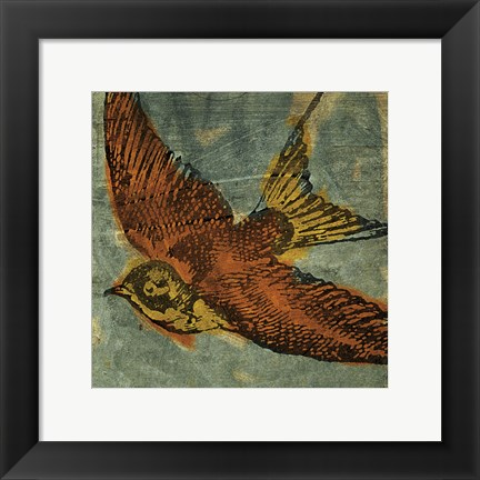 Framed Bird Collage No 1 Print