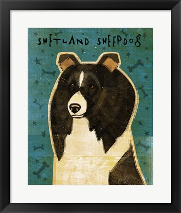 Framed Shetland Sheepdog - Black and White Print