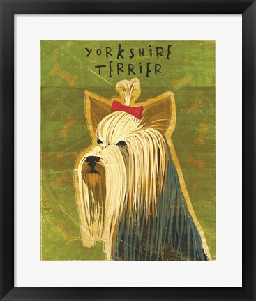 Framed Yorkshire Terrier Print