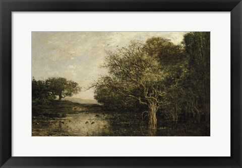 Framed Pond With Herons Print